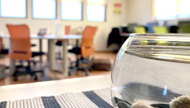 パソコン教室風景